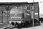 """MaK 2000032 - DB """"216 042-2"""" 11.05.1976 - Gelsenkirchen-Bismarck, BahnbetriebswerkMichael Hafenrichter"""